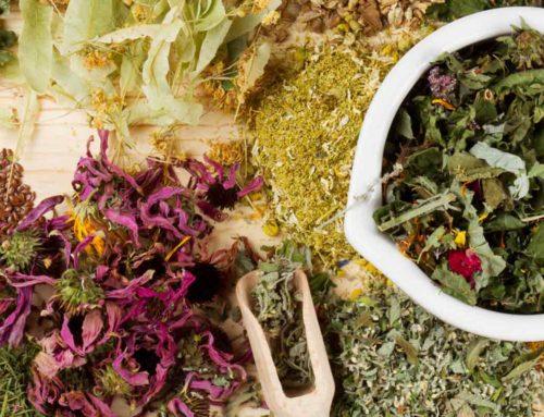 Dereglaje, tulburari si afectiuni care raspund la tratamentul cu plante